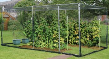 Agriframes Economy Fruit Cage - Black Coated 2.5m x 5m