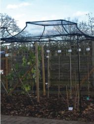 Agriframes Black Arched Top Fruit Cage - 2.5m x 10m