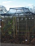 Agriframes Black Arched Top Fruit Cage - 7.5m x 7.5m