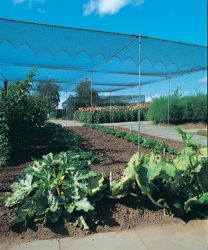 Agriframes Galvanised Superior Fruit Cage - 7.5m x 7.5m