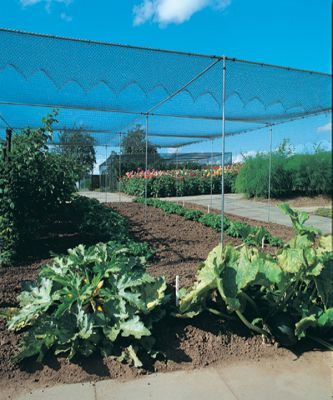 Agriframes Galvanised Superior Fruit Cage - 2.5m x 7.5m