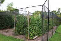 Agriframes Black Coated Superior Fruit Cage - 5m x 7.5m