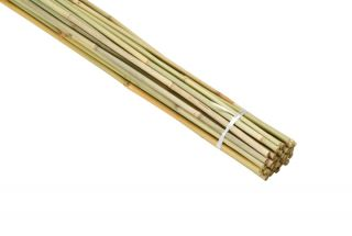 90cm Bamboo Canes (Pack of 40)