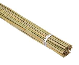 90cm Bamboo Canes (Pack of 60)
