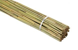 1.5m Bamboo Canes (Pack of 100)