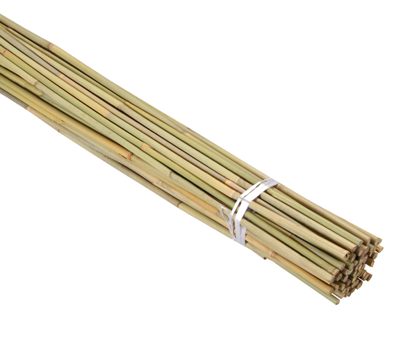 1.8m Bamboo Canes (Pack of 60)