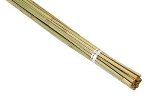 2.4m Bamboo Canes (Pack of 20)