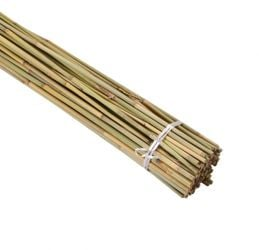 2.4m Bamboo Canes (Pack of 80)