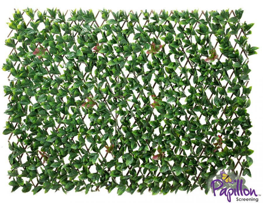 1 x 2m Extendable Artificial Laurel Leaf Screening Trellis (3ft 3in x 6ft 7in) - by Papillon™