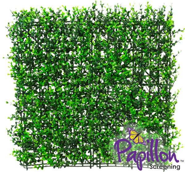 50x50cm Buxus Artificial Hedge Panel - by Papillon™ - 2 Pack - 0.5m²