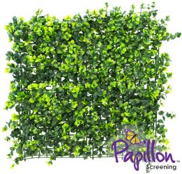 50x50cm Dark Buxus Artificial Hedge Panel - by Papillon™ - 2 Pack - 0.5m²