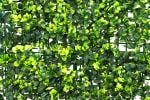 50x50cm Dark Buxus Artificial Hedge Panel - by Papillon™ - 16 Pack - 4m²