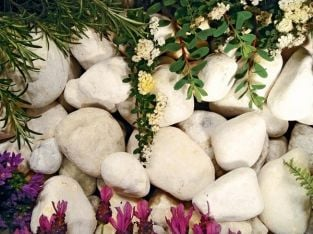 Coral White Pebbles 800Kg Bulk Bag