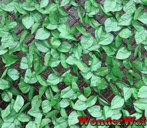 1m x 2m Beech Leaf Trellis Artificial Screening
