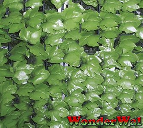 1.5m x 3m Ivy Creeper Light Green Artificial Screening by Wonder Wal™