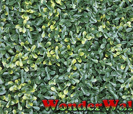 1m x 1m Buxus Leaf Artificial Screening by Wonder Wal™