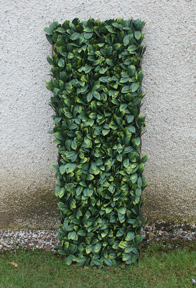 1m x 1m Laurel Leaf Artificial Screening by Wonder Wal�