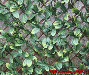 1m Laurel Leaf Artificial Screening
