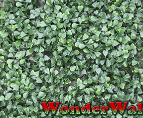 1m Buxus Artificial Screening