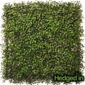 50cm x 50cm Boxwood Artificial Hedge Panel by Hedged In�