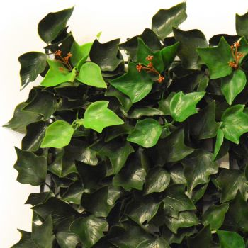50cm x 50cm Ivy Leaf Artificial Hedge Panel by Hedged In™
