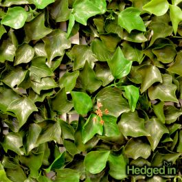 50cm Ivy Leaf Artificial Hedge Panel