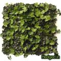 50cm x 50cm Deluxe Ivy Artificial Hedge Panel by Hedged In�