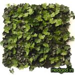 50cm x 50cm Deluxe Ivy Artificial Hedge Panel