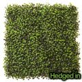 50cm x 50cm Deluxe Boxwood Artificial Hedge Panel by Hedged In�