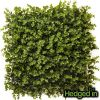 50cm x 50cm Foliage Artificial Hedge Panel