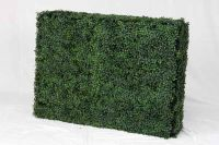 100cm x 75cm Artificial Buxus Instant Hedge by Wonder Wal™