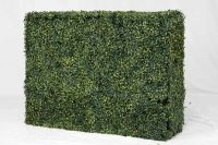 100cm x 75cm Artificial Variegated Buxus Instant Hedge by Wonder Wal™