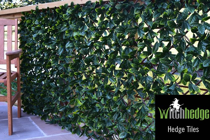 1m x 2m Laurel Leaf Extendable Artificial Screening by Witchhedge™
