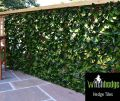 1m x 2m Autumn Extendable Artificial Screening by Witchhedge�