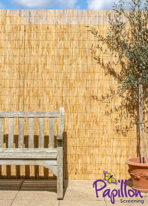 Thick Natural Bamboo Style Reed Fencing Screening 4.0m x 1.0m (13ft 1in x 3ft 3in) - By Papillon™
