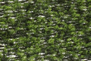 1m x 2m Extendable Artificial Conifer Screening Trellis