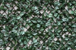 1m x 2m Extendable Artificial Ivy Leaf Screening Trellis