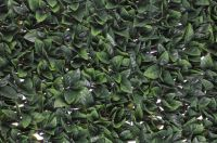 1m x 2m Extendable Artificial Gardenia Leaf Screening Trellis