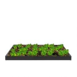 609 Litres - Black Powder Coated Galvanised Steel Raised Bed 259cm x 196cm (H12cm)