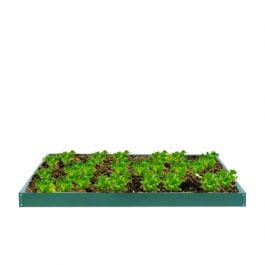 612 Litres - Green Powder Coated Galvanised Steel Raised Bed 321cm x 259cm (H12cm)