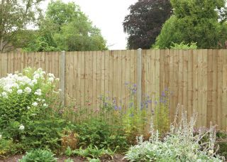 6ft x 5ft Fence Panel Pack of 3 - Pressure Treated Featheredge