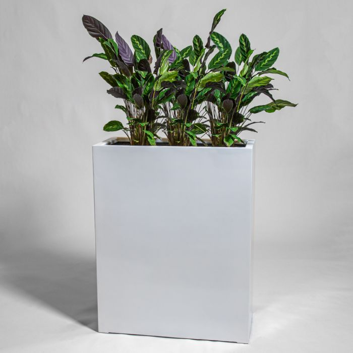 100cm White Gloss Polystone High Trough Planter