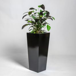 90cm Black Gloss Polystone Tall Flared Planter