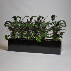 150cm Black Gloss Polystone Low Trough Planter