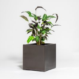 40cm Metallic Grey Polystone Cube Planter