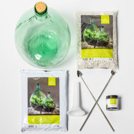 55L Large Glass Terrarium Starter Kit