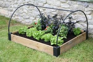 Haxnicks Raised Bed Frame