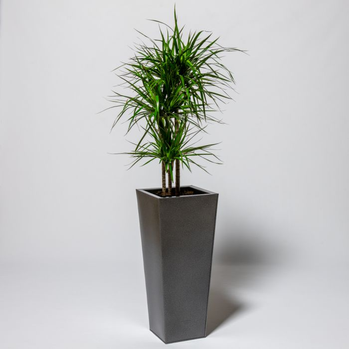 70cm Flared Square Zinc Silver & Black Textured Dipped Galvanised Planter