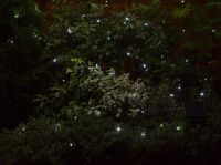 Smart Solar 200 White String Garden Lights 21.9m