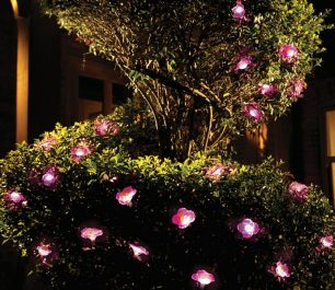 20 Solar LED Lights Petunia Flower Garland